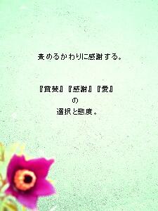 239b.ren.jpg