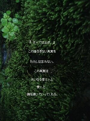 241b.ren.jpg